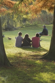 threesome in park