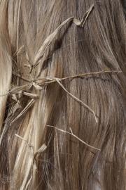 Emily's hair