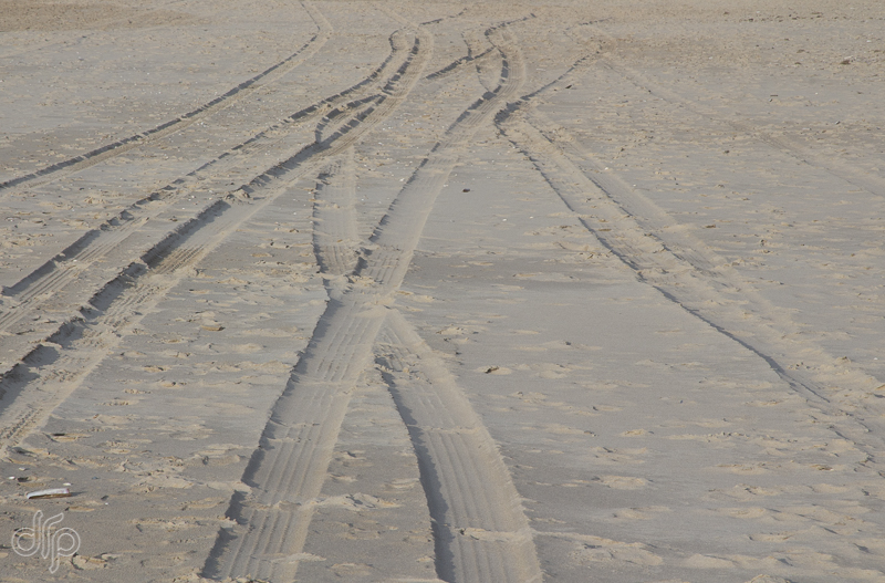 car-tracks-in-sand-1.jpg